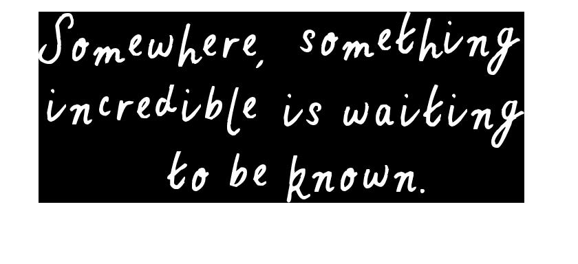 """""""Da qualche parte, qualcosa di incredibile è in attesa di essere scoperto"""""""